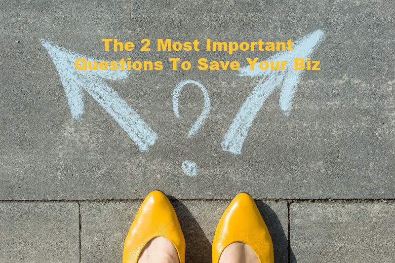 The 2 Most Important Questions To Save Your Biz