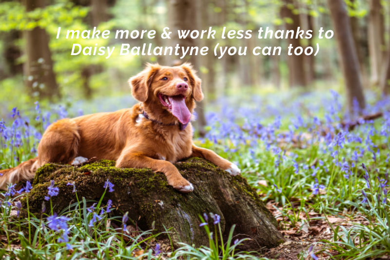 I make more & work less thanks to Daisy Ballantyne (you can too)